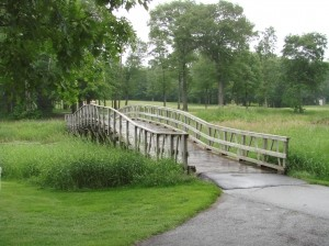 sustainability program